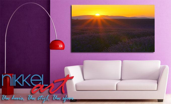 Een kleurrijke natuurbeeld - foto op aluminium lavendel